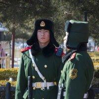 пекин патруль :: Юля Мельникова