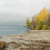 осень :: Sage Ekchard