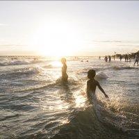 в теплом солнышке купаться... :: Алена Афанасьева