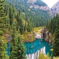 Озеро Каинды в Казахстане :: Maxim Claytor