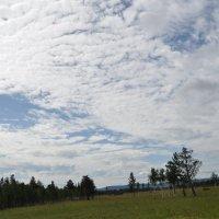 Облачные барханы. :: Tatyana Kuchina