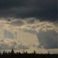 осеннее небо :: татьяна малышева