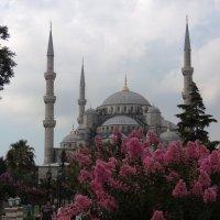 Голубая мечеть :: Елена Ом