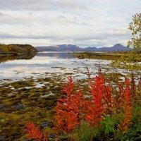Вид с острова Rekoya. :: Ирэна Мазакина