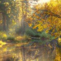 Золотая Шередарь... :: Roman Lunin