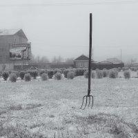 Утро. Был туман. Очень неожиданный кадр. :: Вадим Лячиков