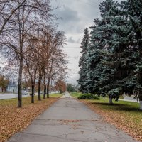Осень :: Юрий Гребенюк