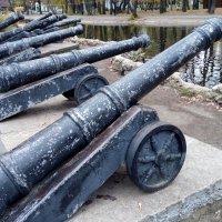 Пушки с берега палят :: Александр Алексеев