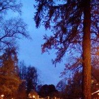 Грот поздней осенью в Александровском саду. (Санкт-Петербург). :: Светлана Калмыкова