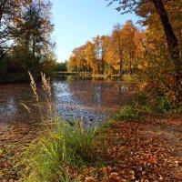 на озере :: Валерий Князькин