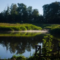 туман, ранее утро, лето, пруд, природа, зелень, берег :: Алена Булдина