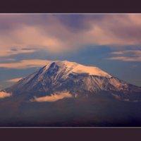 Ararat :: Армен Абгарян