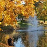 Листья жёлтые над городом кружатся, :: Swetlana V