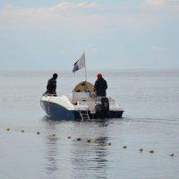 Дайвинг на Чёрном море :: Наталья Мельникова
