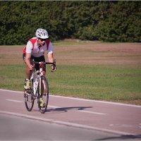 Мир велосипеда-13 :: Lmark