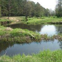 Реки Беларуси :: Тамара Лисицына
