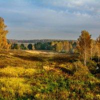 Золотая осень. :: Анатолий 71