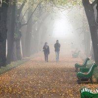 Из тумана :: Владимир Миронов