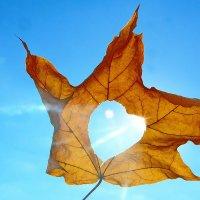 Про осень. :: Paparazzi