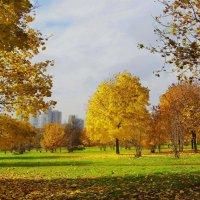 Краски осени. :: Александр Атаулин