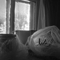 Завтрак :: Роман никандров