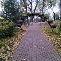 Очарование осени в парке! :: Ольга Кривых