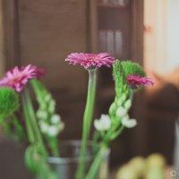 Цветок :: Emil Buturlin
