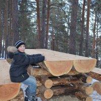 к столу! :: Ольга Русакова