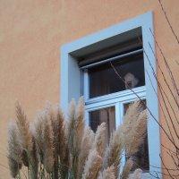 окно в прошлое  или мамино окно :: kuta75 оля оля