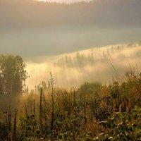 Утренние туманы :: Сергей Чиняев