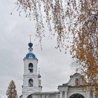Скромная красота нашей осени :: Николай Белавин