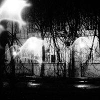 белые огни :: Дмитрий Потапов