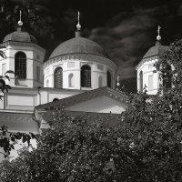 Купола и яблони. :: Андрий Майковский