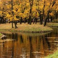 Островок осени :: Вера Моисеева