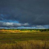 Осеннее настроение :: Валерий Талашов