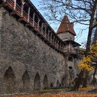Tallinn :: Priv Arter