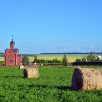 Сельский пейзаж. :: Наталья