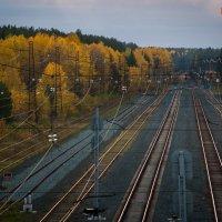 """Станция """"Осень"""" :: Алексей Обухов"""