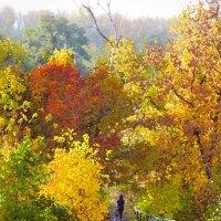 Мостик в осень. :: ольга хадыкина