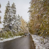 Ранний снег :: Anatoliy Pavlov