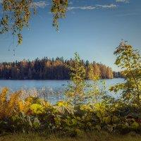 Назад в лето :: Евгения К