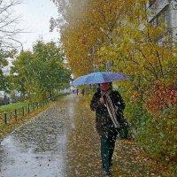 Первый снег :: Вера Щукина