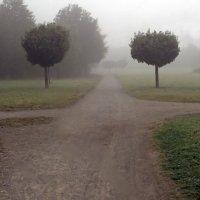 Туманные дороги :: Alexander