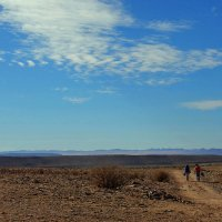 Намибия. :: Михаил Рогожин