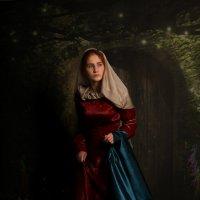 Великолепный век :: Natalia Petrenko