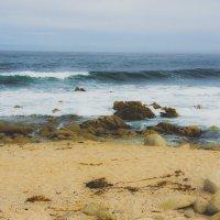 Берег океана в городе Монтерей, США :: Андрей Крючков