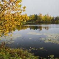 Осень на деревенском пруду :: Валентин Котляров