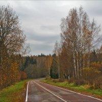 осень в Абрамцево :: Дмитрий Анцыферов