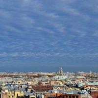 Питерское небо :: Софья Борисова
