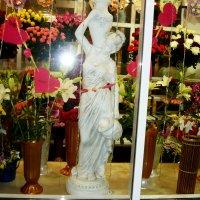 Витрина цветочного магазина. :: Надежда